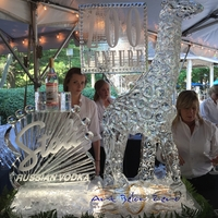 Thumb_stoli_vodka_at_the_zoo_venture_giraffe_luge_ice_sculpture