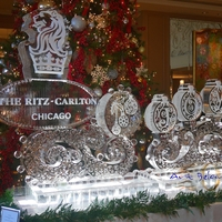 Thumb_swirly_joy_for_the_magnificent_ritz_carlton_chicago_ice_sculpture