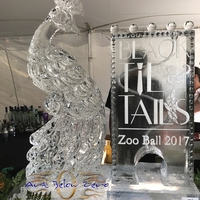 Thumb_zoo_ball_2017_black_tie_and_tails_martini_luge_with_3d_peacock_ice_sculpture