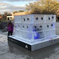 Thumb_adidas_ice_cube_with_running_bibs_frozen_celebrating__whyirunhuskers__adidaswomen__huskers__huskers_in_lincoln__nebraska
