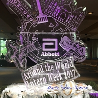 Thumb_abbott_intern_week_2017_ice_sculpture