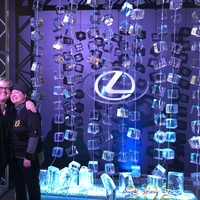 Thumb_curtain_suspended_ice_for_lexus_and_evenement