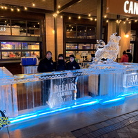 Thumb_ice_bar_corners_of_brookfield_belair_cantina